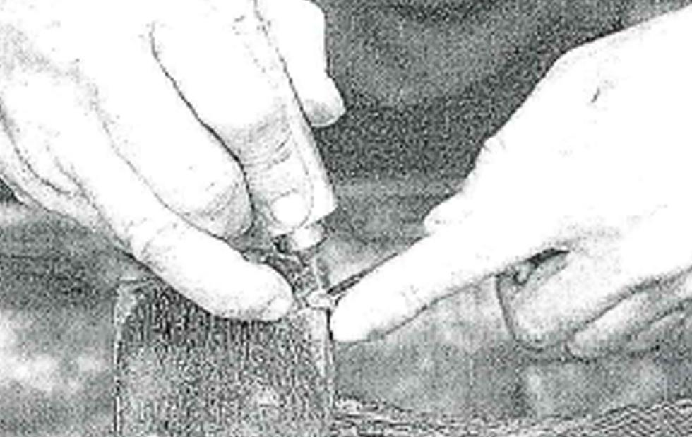 L'inserto Oltre, del quotidiano la Prealpina